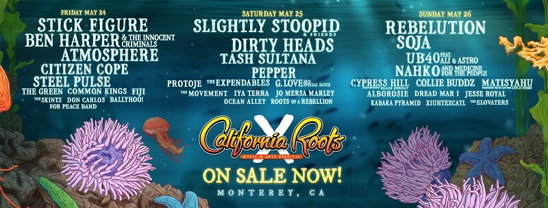 California Roots Music and Arts Festival 2019 Lineup