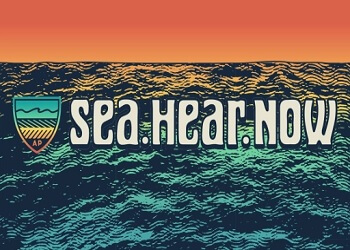 Sea Hear Now Festival